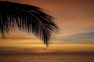 Sunsetwszzz.jpg