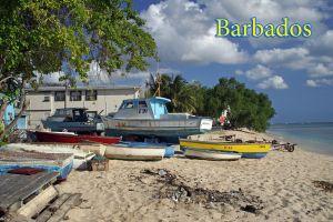 Boatspc1z.jpg