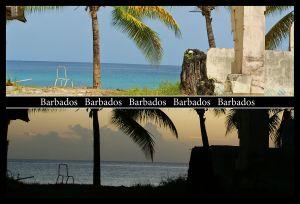DayNightPCBarbados.jpg