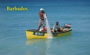 FishingYellowboatPC.jpg