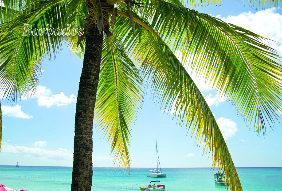 BarbadosP.jpg